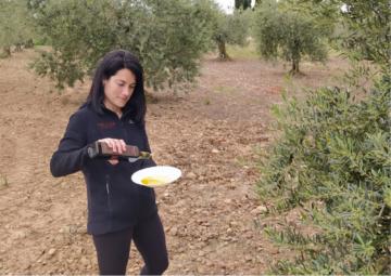 """""""La Rioja Media es idónea para conseguir aceites de mucha calidad y personalidad"""""""